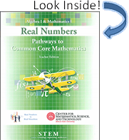 Real Numbers Book Cover Look Inside
